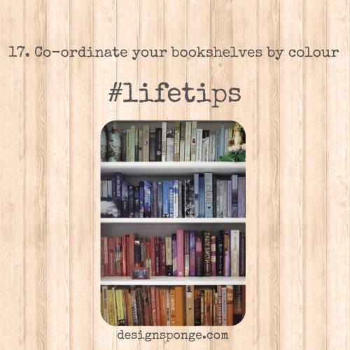 Lifetip 17