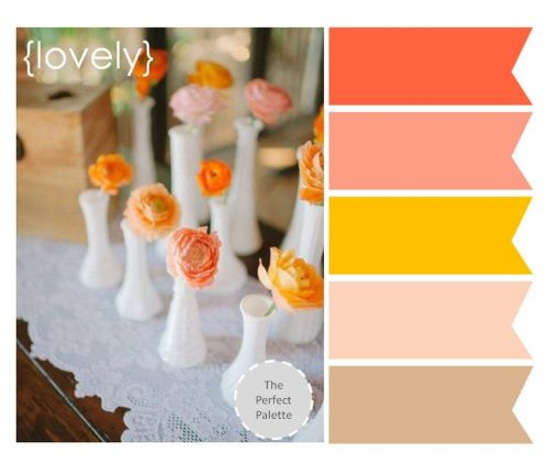 colour palette 1